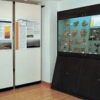 Civic Archaeological Museum Muggia